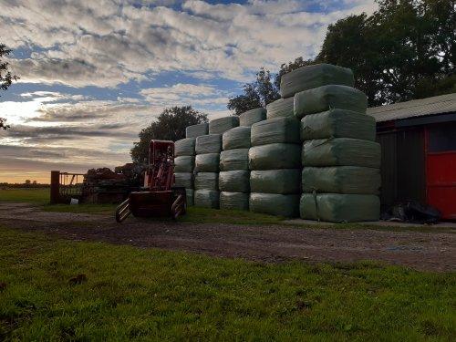 Foto van een Sauerburger SH500. Hoppa weer 3ha gras binnen🤟. Geplaatst door casejxu op 22-07-2020 om 20:48:27, met 7 reacties.