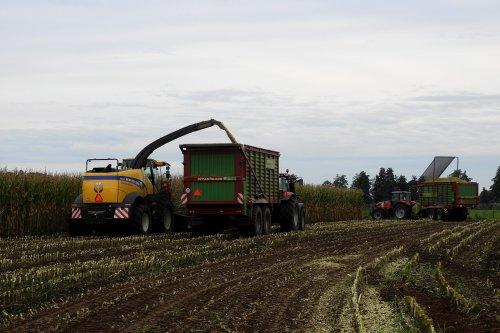 Maisoogst bij Rensen Mariënheem  https://youtu.be/EIpTbfEqiI0. Geplaatst door pekkerietfan op 04-12-2020 om 22:23:55, op TractorFan.nl - de nummer 1 tractor foto website.