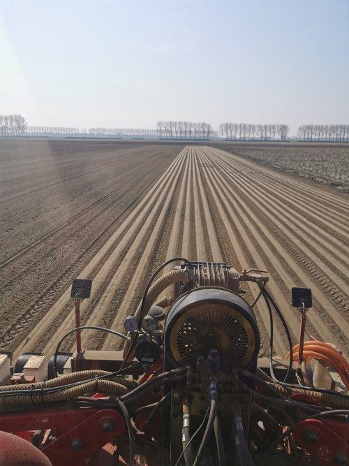 Foto van een Agricola Italiana precisiezaaimachine ( uien zaaien in het mooie voorjaars zonnetje.). Geplaatst door thomasvw13 op 19-01-2021 om 09:42:38, met 5 reacties.