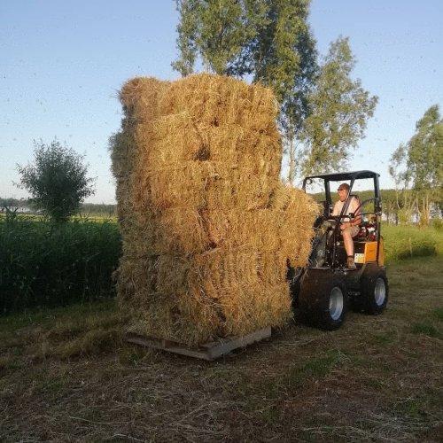 Foto van een Giant D337t. Geplaatst door Lode103s op 19-07-2019 om 09:48:33, op TractorFan.nl - de nummer 1 tractor foto website.