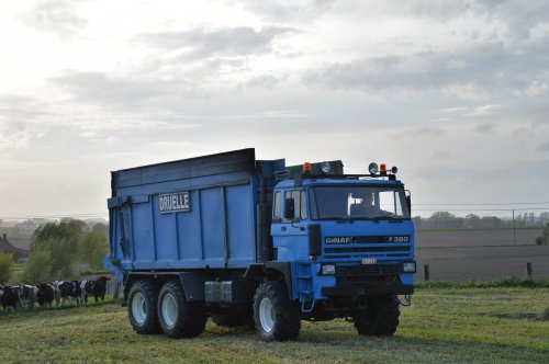 Foto van een GINAF Maistruck, bezig met gras hakselen.. Geplaatst door Jan Ramon op 22-06-2015 om 20:31:15, op TractorFan.nl - de nummer 1 tractor foto website.