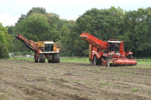 Aardappels rooien bij Evenhuis uit Giethoorn  https://youtu.be/X7Lxc69Zvhc. Geplaatst door pekkerietfan op 16-11-2019 om 09:22:48, op TractorFan.nl - de nummer 1 tractor foto website.