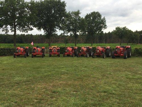 Guldner G25S, G30S, G35S, G40S, G35S, G50S en G50AS. Geplaatst door Valkenburg op 21-07-2019 om 13:42:52, op TractorFan.nl - de nummer 1 tractor foto website.