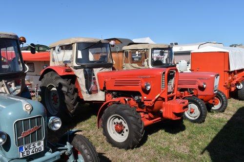 Foto van een Guldner G60A. Geplaatst door jordi 1455 op 30-09-2019 om 22:29:52, op TractorFan.nl - de nummer 1 tractor foto website.