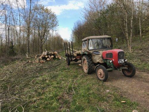 Met het beesie hout halen uit het bos.. Geplaatst door GüldnerAK op 09-05-2020 om 01:37:24, met 4 reacties.