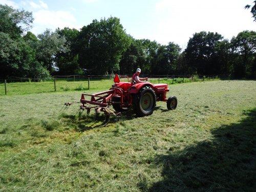 Foto van een Guldner G30S, bezig met gras schudden.. Geplaatst door Palletje op 30-06-2012 om 18:29:14, op TractorFan.nl - de nummer 1 tractor foto website.