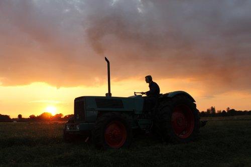 Foto van een Hanomag Brillant 701A, bezig met gras maaien.. Geplaatst door Allrad op 11-11-2013 om 22:40:05, met 5 reacties.