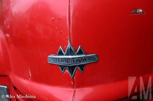 International Logo van Alex Miedema