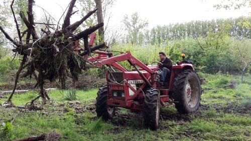 Foto van een International 644 allrad. Geplaatst door KubotaB6001 op 01-05-2017 om 21:05:22, op TractorFan.nl - de nummer 1 tractor foto website.