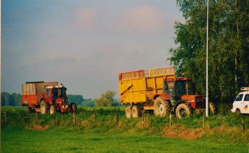 Foto van een International Meerdere, omg. Didam, maisoogst 2000.. Geplaatst door Martin Holland op 02-08-2018 om 09:32:05, op TractorFan.nl - de nummer 1 tractor foto website.