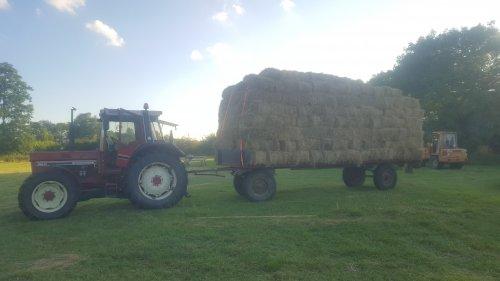 Foto van een International 956 XL met een volle vracht 💪. Geplaatst door fergusonnetje op 01-07-2019 om 22:40:46, op TractorFan.nl - de nummer 1 tractor foto website.