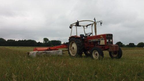 Wei maar eens uitgemaaid waar koeien hebben gelopen.. Geplaatst door Tim van de Bakker op 15-07-2019 om 17:00:16, op TractorFan.nl - de nummer 1 tractor foto website.