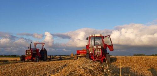 Foto van een International 844 XL. Geplaatst door leroy s op 04-08-2019 om 08:40:06, op TractorFan.nl - de nummer 1 tractor foto website.