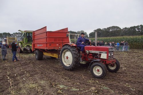 Foto van een International 633. Geplaatst door jans-eising op 07-10-2019 om 20:29:52, op TractorFan.nl - de nummer 1 tractor foto website.