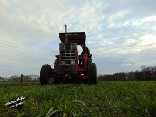 Met de International 844 S even een stukkie land omfrezen. Geplaatst door Han745XL op 23-03-2020 om 09:10:42, op TractorFan.nl - de nummer 1 tractor foto website.