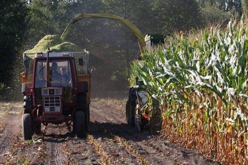 Foto van een International 856 XL. Geplaatst door Willem_H op 01-01-2021 om 23:57:24, op TractorFan.nl - de nummer 1 tractor foto website.