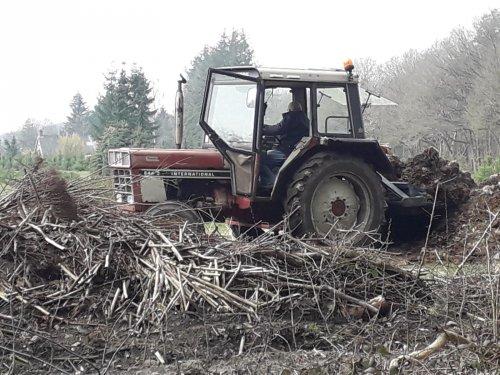 Foto van een International 844 S bezig in het bos. Gespot in Odoorn. Geplaatst door bob de bouwer op 25-03-2021 om 20:13:42, met 2 reacties.