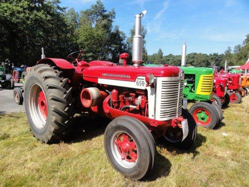 Foto van een International D 650, bezig met poseren.oldtimer show ravels.. Geplaatst door mc-624 op 20-08-2012 om 23:17:51, op TractorFan.nl - de nummer 1 tractor foto website.