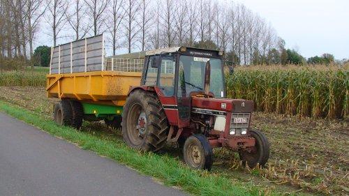 Foto van een International 745, bezig met maïs hakselen. Maïs 2008 Doe-het-zelvers uit Beerse(België)