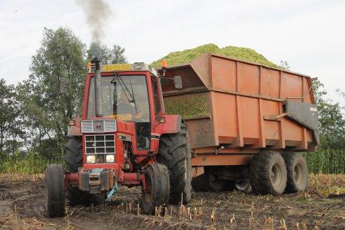Foto van een International 955 XL, bezig met maïs hakselen. Foto met dank aan @Dennisvandersteen.. Geplaatst door jannesvessem op 26-01-2015 om 13:20:08, met 9 reacties.