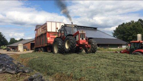 Foto van een International 1246, druk bezig met Gras inkuilen.. Geplaatst door interr844-s op 01-08-2015 om 07:26:01, met 6 reacties.
