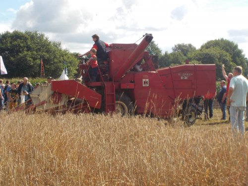 Foto van een internationalharvester 8 - 31 in nordhorn. Geplaatst door international 533 op 15-08-2016 om 21:09:46, op TractorFan.nl - de nummer 1 tractor foto website.