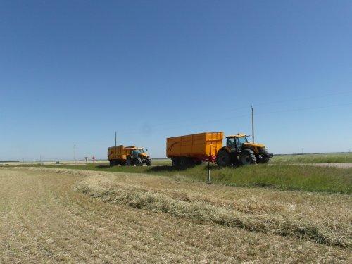 Foto van een JCB Meerdere, bezig met dumperen. 8250 & 7270 met Jako dumpwagens, klaar voor Barley Silage (gerst hakselen) tijdens stage in Canada zomer '12.