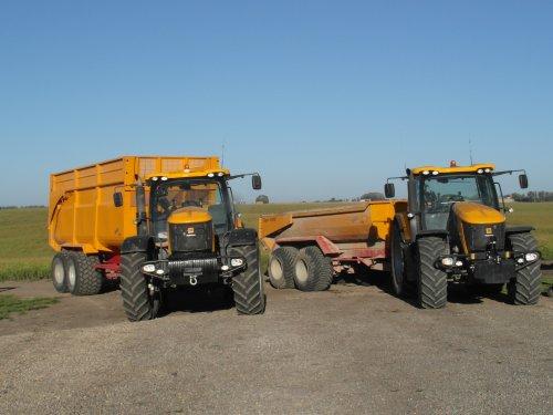 Foto van een JCB Meerdere, bezig met Poseren.  JCB 8250 met Jako Tiger 240 Silage kipper & JCB 7270 met Jako Tiger 240 S Grond dumper.