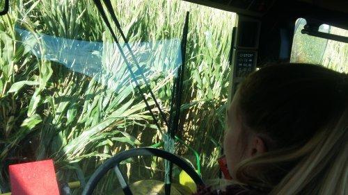 Foto van een John Deere Lady.  1 van de laatste percelen van het jaar maar ff van de bestuurdersstoel afgegaan :D