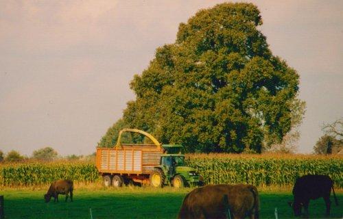 Foto van een John Deere Meerdere, ergens in de Achterhoek, oktober 2000.. Geplaatst door Martin Holland op 02-08-2018 om 09:32:03, op TractorFan.nl - de nummer 1 tractor foto website.