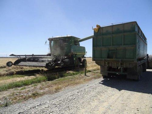 een TF'er in actie! graszaad dorsen voor barenbrug agriseeds.. Geplaatst door NZDairy op 30-01-2020 om 19:27:42, op TractorFan.nl - de nummer 1 tractor foto website.