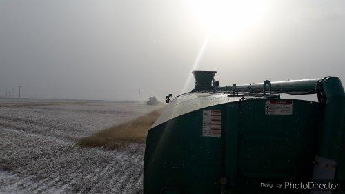 Foto van een John Deere 8295R, in de verte de John Deere 8310R van deze foto: https://www.tractorfan.nl/picture/1335613/  Voor het afstellen van de GPS, en de spreidbreedte van de ketsplaat was de sneeuw boven op de opslag (Gekiemde graan korrels die tijdens het oogsten verloren zijn gegaan) een mooie uitkomst.  Alle tanken en ketsplaten zijn hetzelfde, en dan nog zat er een verschil van 4foot a 1.20 meter in, 36foot en 40foot waren de spreid patronen.  Aan de hand van de spreid breedte en tankinhoud werd er per trekker en tank combinatie een aparte lijn en rijsnelheid ingesteld.    Elke chauffeur zat dus ook op zijn eigen stuk op hetzelfde perceel, met oog op de GPS lijnen.