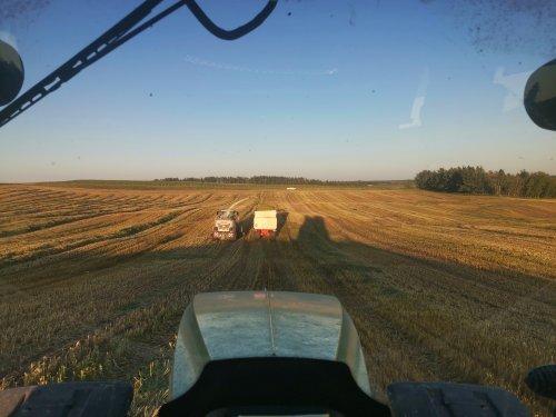 Een glooiend perceel barley hakselen in Canada. Geplaatst door thijs-jacobsen op 27-02-2020 om 15:09:05, op TractorFan.nl - de nummer 1 tractor foto website.