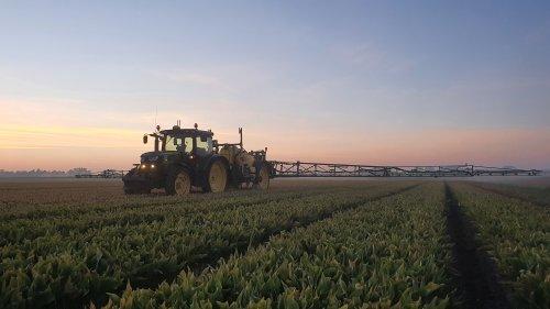 Foto van een John Deere 6115R, rondje spuiten.. Geplaatst door daan-van-der-kolk op 10-06-2021 om 22:50:20, op TractorFan.nl - de nummer 1 tractor foto website.