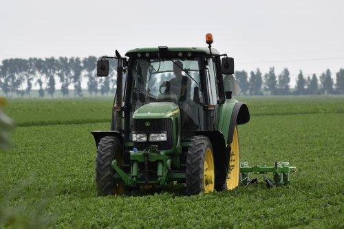 Foto van een John Deere 6420 in Flevoland. Geplaatst door warmerbros op 23-07-2021 om 22:59:19, op TractorFan.nl - de nummer 1 tractor foto website.