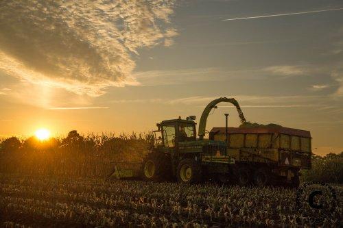 Foto van een John Deere 5830, bezig met maïs hakselen. Loonbedrijf