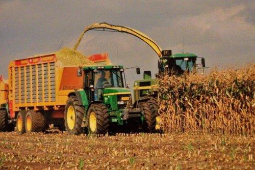 Foto van een John Deere 7010 Serie, bezig met maïs hakselen.  Vrenken, Roggel    2001. Geplaatst door Martin Holland op 01-01-2014 om 12:23:12, op TractorFan.nl - de nummer 1 tractor foto website.