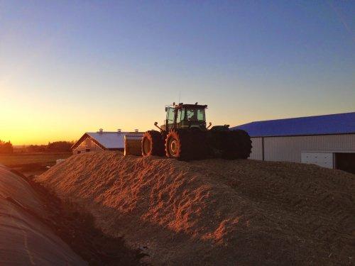 Foto van een John Deere 9520, bezig met maïs inkuilen.. Geplaatst door Peppeltje op 05-10-2014 om 21:02:34, met 2 reacties.