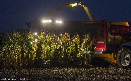 Jansen Heeten met de John Deere 8400 in de mais.. Geplaatst door -Mike- op 08-10-2015 om 20:50:41, op TractorFan.nl - de nummer 1 tractor foto website.