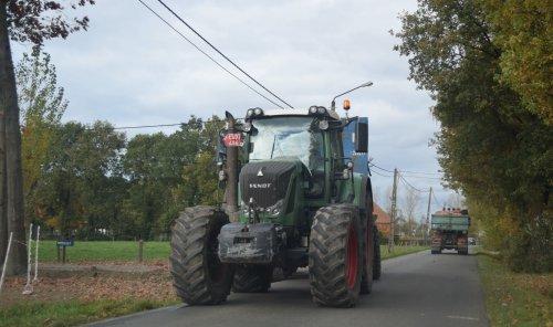 Hannes Verboven uit Zoersel mais hakselen voor boer Bens. Geplaatst door jd7920 op 04-11-2015 om 16:02:43, op TractorFan.nl - de nummer 1 tractor foto website.