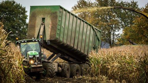 Hannes Verboven, voor landbouwer Bens uit Geel, in Tessenderlo. Geplaatst door Bengo op 08-11-2015 om 02:05:06, op TractorFan.nl - de nummer 1 tractor foto website.