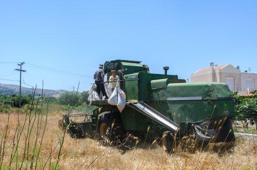 John Deere 955  (combine) (1977-1983) aan het werk in Griekenland, het eiland Kos.. Geplaatst door Hielkie op 23-05-2016 om 20:28:59, op TractorFan.nl - de nummer 1 tractor foto website.