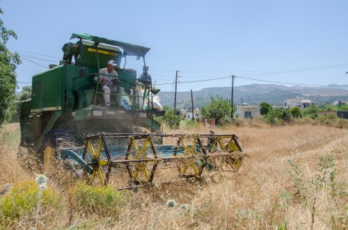 John Deere 955  (combine) (1977-1983) aan het werk in Griekenland, het eiland Kos.. Geplaatst door Hielkie op 23-05-2016 om 20:29:06, op TractorFan.nl - de nummer 1 tractor foto website.