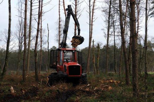 Hout uitrijden door Koster Hout  https://youtu.be/a9tXzIj2V80. Geplaatst door pekkerietfan op 16-03-2020 om 16:51:42, op TractorFan.nl - de nummer 1 tractor foto website.