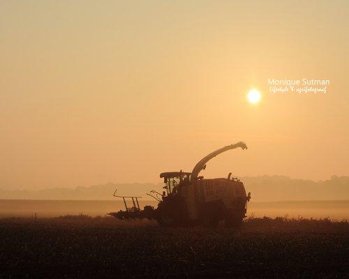 Krone Big X van Lifestyle & Agrifotografie