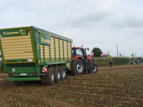 Foto van een Krone TX 560, bezig met maïs hakselen. Internationale werktuigdagen Oudenaarden 2013.