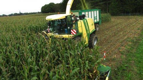 Foto van een Krone Big X 1100 van Lohnunternehmen P. & P. Coenen(DE), bezig met maïs hakselen.. Geplaatst door TonC op 29-09-2014 om 20:16:49, op TractorFan.nl - de nummer 1 tractor foto website.
