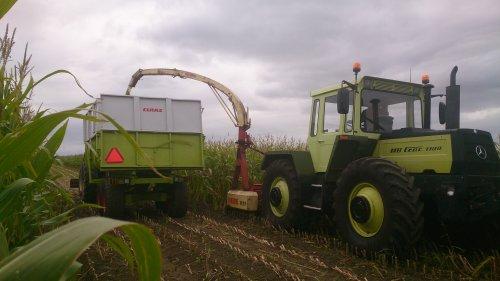 Foto van een Krone MC16B, druk bezig met Maïs hakselen.. Geplaatst door sybren op 07-10-2014 om 18:28:36, met 11 reacties.