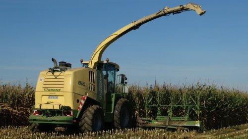 Foto van een Krone Big X 1100, bezig met maïs hakselen. Maïs 2012 Lu Coenen uit Elmpt(D).. Geplaatst door klompie1978 op 10-03-2015 om 19:25:04, op TractorFan.nl - de nummer 1 tractor foto website.