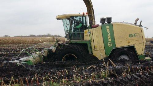 Foto van een Krone Big X 1100, bezig met maïs hakselen. Maïs 2012 Lu Janssen uit Aurich(D).. Geplaatst door klompie1978 op 05-05-2015 om 19:57:03, op TractorFan.nl - de nummer 1 tractor foto website.